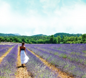woman-in-lavender-field-blue-sky-700px-wide-lr
